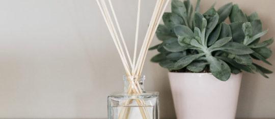 Comment choisir son diffuseur de parfum avec bâton