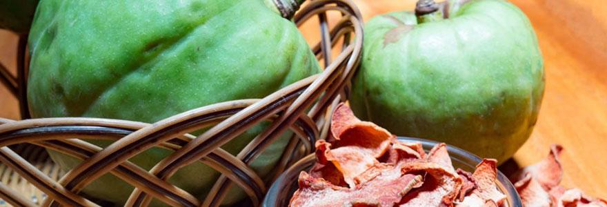 Compléments alimentaires à base de Garcinia Cambogia